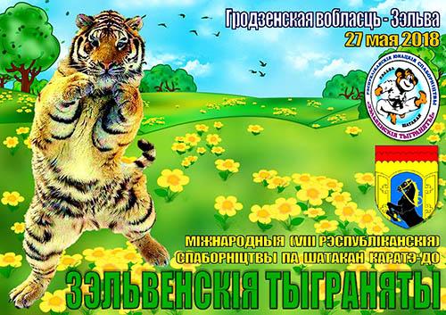 27-28 мая 2018 года, г. Зельва, Зэльвенскiя тыграняты-2018