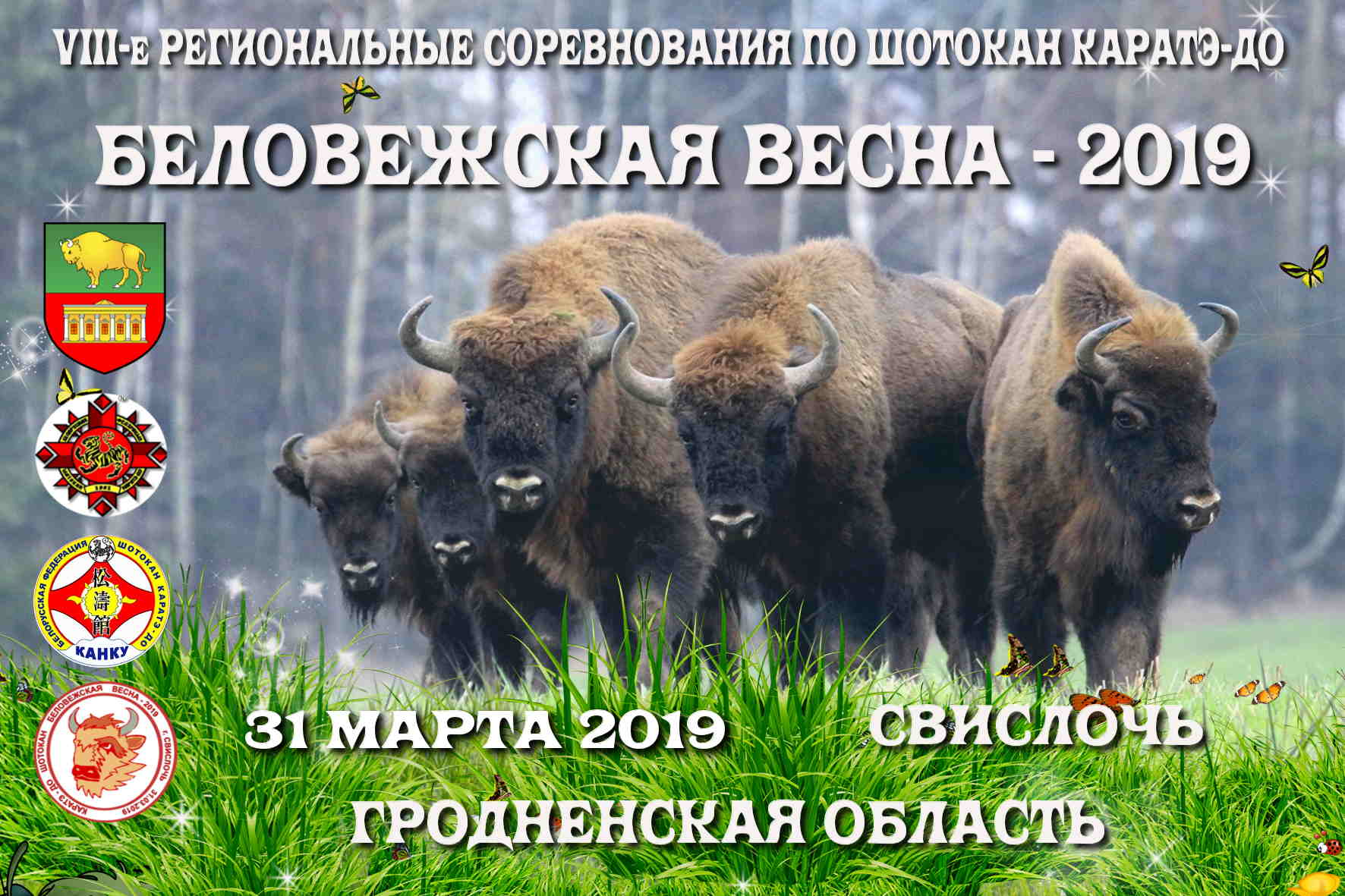 31 марта 2019г., г. Свислочь, VIII-е региональные соревнования «Беловежская весна» по шотокан каратэ-до