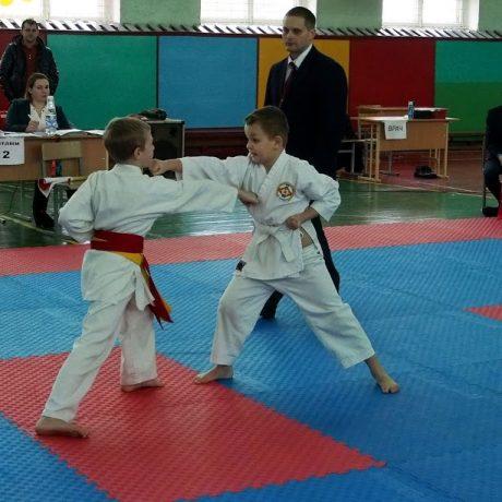 Занятия каратэ в Волковыске и Роси